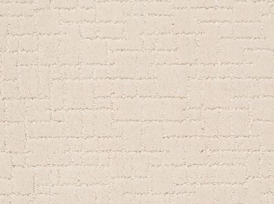 Anderson Tuftex Builder Brindle Barely Beige 00111_ZZB84