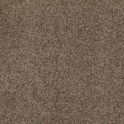 Anderson Tuftex AHF Builder Select Get Inspired Malted Crunch 00758_ZZL14
