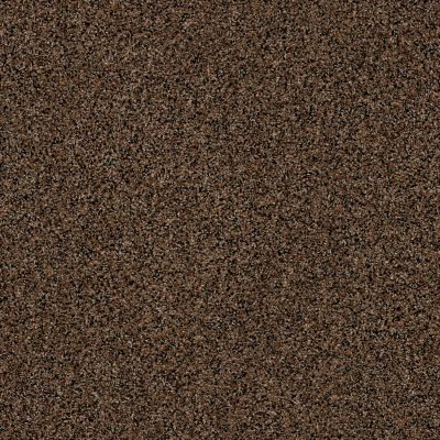 Anderson Tuftex AHF Builder Select Waltzing Toffee 00784_ZZL41