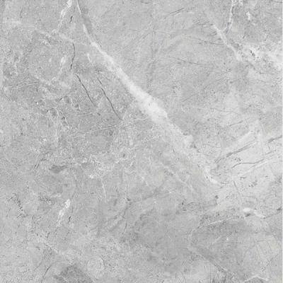 Casa Roma ® Sorrento Mica (12×24 Rectified) CAS69286