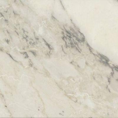 Casa Roma ® Carrara Select Arabescato (12×24 Honed Rectified) CASIRG1224143