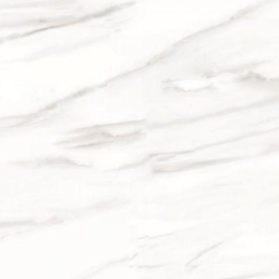 Casa Roma ® Carrara Select Venato (24×48 Honed Rectified) CASIRG2448147