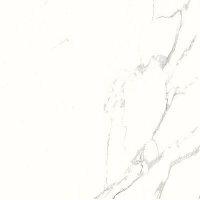 Casa Roma ® Super White Marbles Statuario Scrub(24″x24″,Polished) CASMA650106