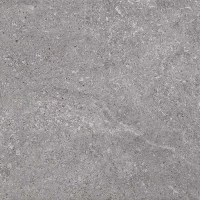 Casa Roma ® Ecoproject Grey (12×24 Rectified) CASPF00012819