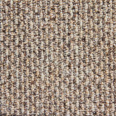 Richmond Carpet Aspect III A/B & K/B Valley Field RIC1214ASPEJ