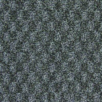Richmond Carpet Serenade Salt And Pepper RIC2603SERE