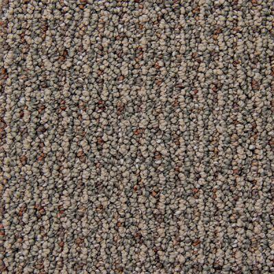 Richmond Carpet Cashmere Runway Style RIC2903CASH