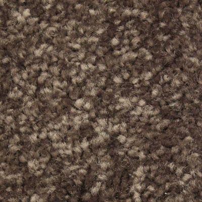 Richmond Carpet Regal Supreme Tamarind RIC3175RESU