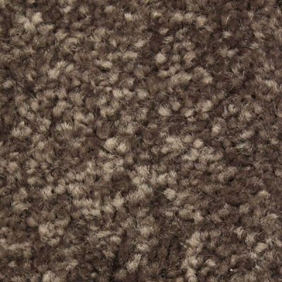 Richmond Carpet Satin Elegance Tamarind RIC3175SAEL