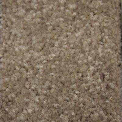 Richmond Carpet Satin Elegance Birch Bark RIC3183SAEL
