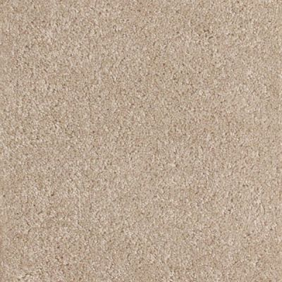 Richmond Carpet Touch Down Soft Cameo RIC3679TOUC