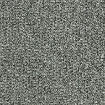 Richmond Carpet Montage Dusty Ranch RIC3748MONT