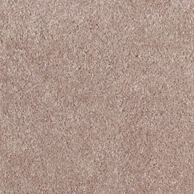 Richmond Carpet Touch Down Burnished Taupe RIC3918TOUC