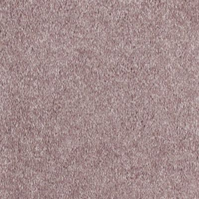 Richmond Carpet Prospect Chocolate RIC3922PROS