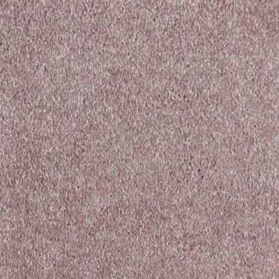 Richmond Carpet Summit Chocolate RIC3922SUMM