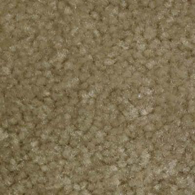 Richmond Carpet Noble Elegance Pumpkin Seeds RIC4376NOEL