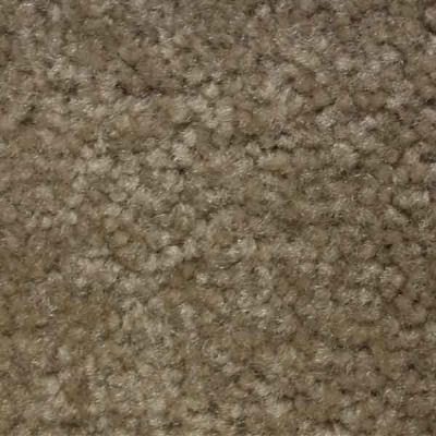 Richmond Carpet Noble Supreme Antique RIC4381NOSU