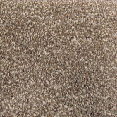 Richmond Carpet Soft Decadence Malted Crunch RIC4806SODE