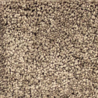 Richmond Carpet Sumptuous II Walnut Grove RIC4838SUMP