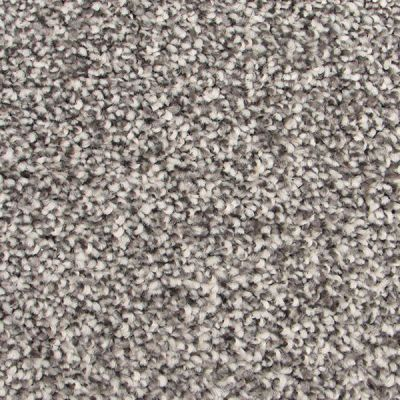 Richmond Carpet Barony Essential Earth Stone RIC4877BAES