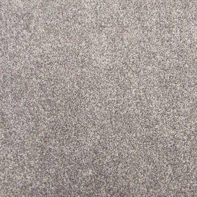 Richmond Carpet Barony Supreme Loft RIC4880BASU