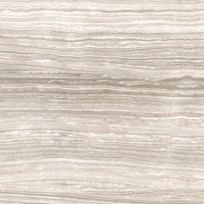 Casa Roma ® Algonquin Limestone Clay (12″x24″) SAN69180