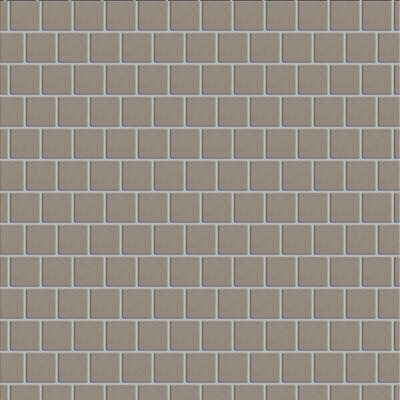 "Casa Roma ® Simply Modern Grey (1""x1"" Mosaic) STOUSG12MS163"