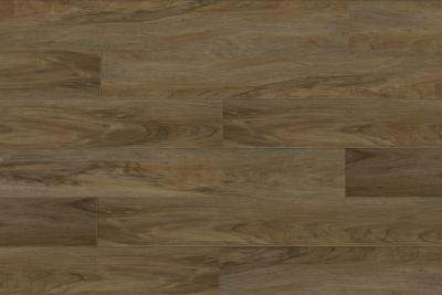 Great Floors Exclusive Performacore Wide Rye WIWP0103