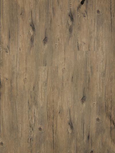 Great Floors Exclusive XL-Lence Tigress XLLENCE-GF5000