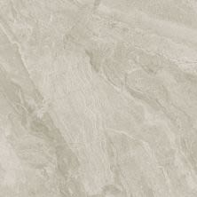 Dolphin Carpet & Tile Mainstream Greige WPMAIGRE32