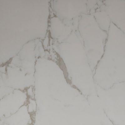 Dolphin Carpet & Tile Statuary Matt White ROSTAWHI24